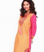 Vaneeza Pret Wear Dresses 2014 For Women 8