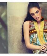 Firdous Cloth Mills Winter Dresses 2014 For Women 007