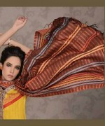 Lala Textiles Celebre Woolen Shawl Dresses 2014-15 5