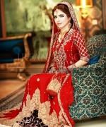Pakistani Bridal Dresses 2015 For Women 0013