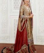 Pakistani Bridal Dresses 2015 For Women 005