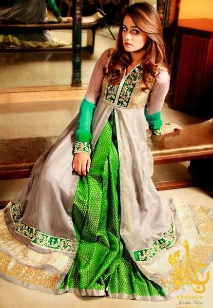 Model Fashion Of Pakistani Women Silk Dresses 2014  Fashion 2017