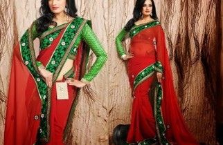 Trends Of Indian Sarees 2015 For Women 0015