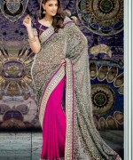 Trends Of Indian Sarees 2015 For Women 002