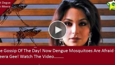 fight dengue with meera