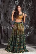 Tena Durrani Formal Dresses 2015 For Women 2