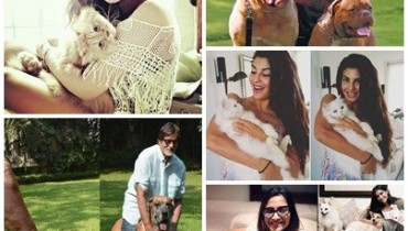 Pictures Of Bollywood Celebrities And Their Pets