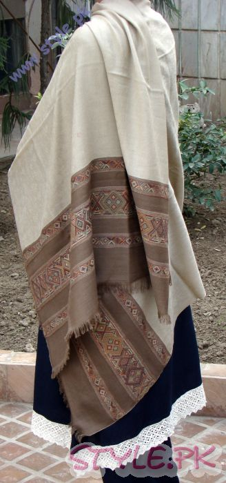 Pashmina Hand Embroidery Modern Design For Girls Badge with Brown Border