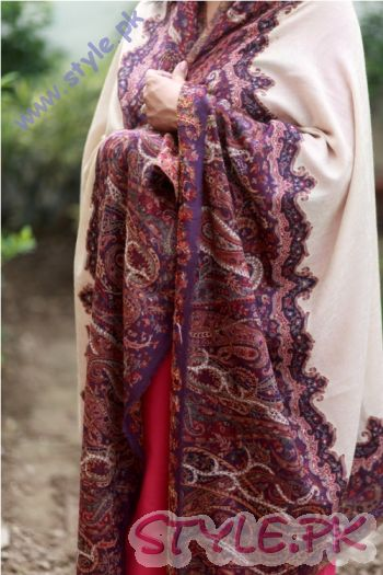 Pashmina Hand Woven with Wide Border by Paradoosh