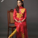 Beautiful Dress For Women in Pakistan 2011 Collection 150x150 nishat linen