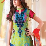 Firdous Lawn Collection 2011 - Beautiful Dress