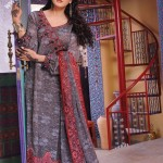 Grey Lawn Dress For Women