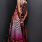 Pakistani Lawn Prints For Women