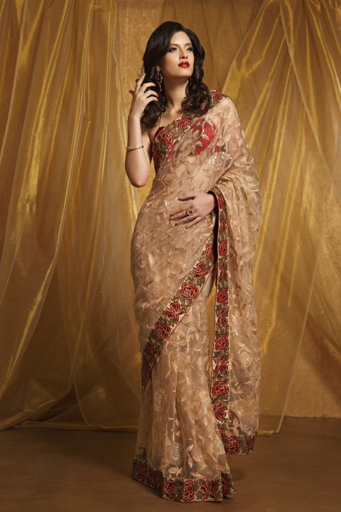 subtle beige saree in net