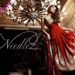 needlez embrioded collection 150x150 local designer clothes for women