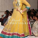 Latest Bridal Mehndi Dresses For Brides 2011 Collection