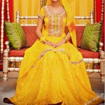 Bridal Mehndi Dresses For Bridals 2011 Collection (11)