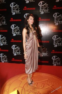 Shehla Chatoor's Latest Collection in Lux Style Awards (2)