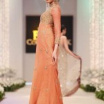 Latest Fashion Frock Collection for women 2012 5
