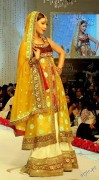 bridal dresses 2012 in Pakistan and india (9)