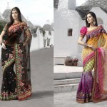 Latest Fashion Indian Saree Collection 2012 For Girls 12