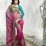 Latest Fashion Indian Saree Collection 2012 For Girls 15