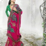 Latest Fashion Indian Saree Collection 2012 For Girls 4