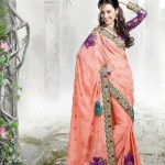 Latest Fashion Indian Saree Collection 2012 For Girls 5
