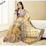 Latest Fashion Indian Saree Collection 2012 For Girls 7