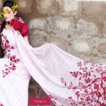 Latest Lawn Collection For Summer By Hira Lari 2012-006