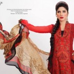 Stylish Lawn Dresses 2012 for Women of Pakistan 9