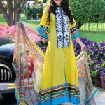 Shirin Hassan Latest Summer Dresses For Women 2012 008