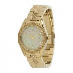DKNY Latest And Exclusive Gold Watches Collection 2012 for Women 011