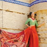 Resham Ghar Sarees Collection 2012 002