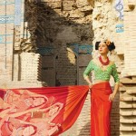 Resham Ghar Sarees Collection 2012 005