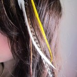 hair feather trends for women 2012_05