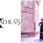 Fahad Hussayn Couture Collection For Women 2012 001