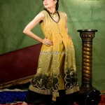 Rano's Heirlooms Formal Wear Dresses 2012 for Women 005