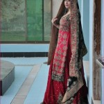 Crystallia Wedding Wear Collection 2012 For Women