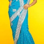 Ethnic Couture Saree Collection 2012 For Women 0010