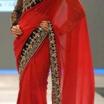 Ethnic Couture Saree Collection 2012 For Women 0011