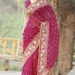 Ethnic Couture Saree Collection 2012 For Women 004