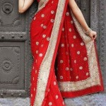 Ethnic Couture Saree Collection 2012 For Women 005