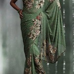 Ethnic Couture Saree Collection 2012 For Women 007