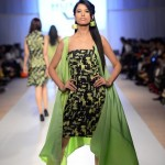 Kuki Concepts Collection 2012 At Fashion Pakistan Week, Season 4 0011