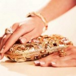 Crystalline Winter Clutches Collection 2012-2013 For Women  0010