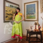 FSN Dressline Fall Collection 2012 for Women 003 150x150 pakistani dresses