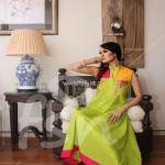 FSN Dressline Fall Collection 2012 for Women 006