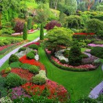 Best Garden Design Ideas 2013 0011