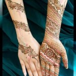 Indian Mehndi Designs 2013 0013